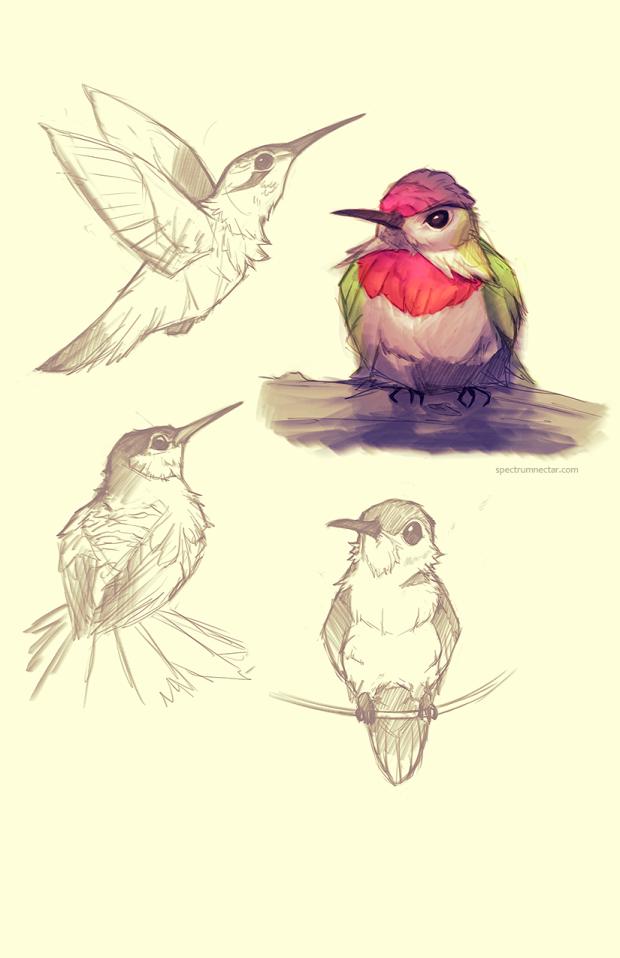hummingsm