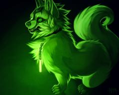 whitewolftikaani